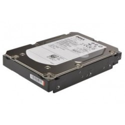 Dysk Dell 1TB 7.2K RPM SATA 6Gbps 3.5in Cabled Hard Drive, (T130)